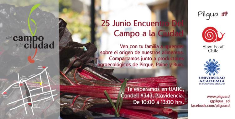 25 JUNIO : Encuentro del Campo a la Ciudad