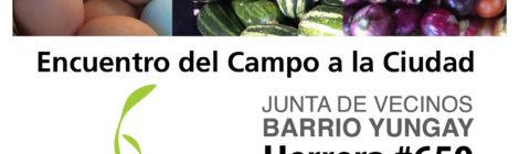 Encuentro del Campo a la Ciudad - Barrio Yungay